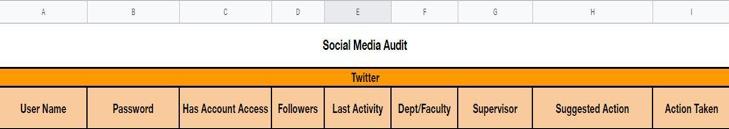 Social audit screenshot